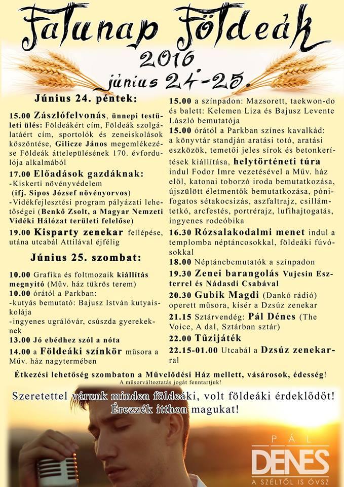 Falunap2016
